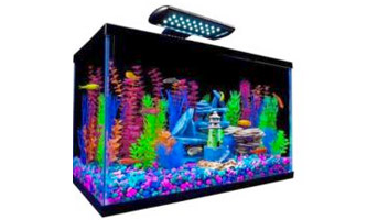 Perfecto Tetra® GloFish® Aquarium Kit