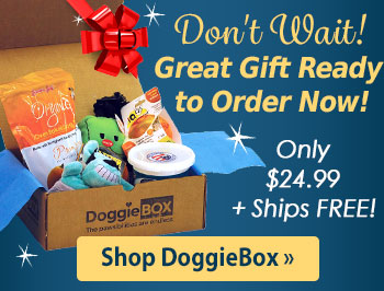 Doggie Box Makes the Perfect Holiday Gift!
