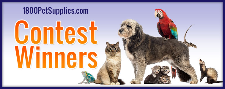 1800PetSupplies.com Contest Winners