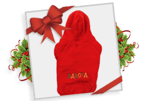 Personalized Holiday Hoodies!
